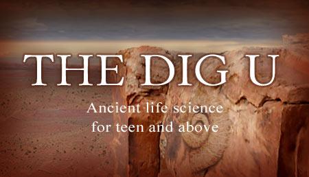 The Dig U